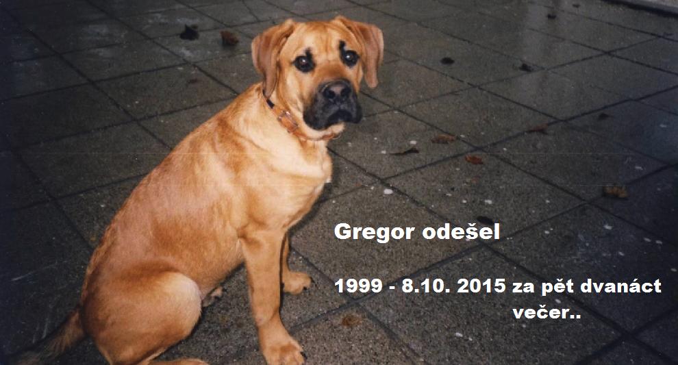 Gregor odešel