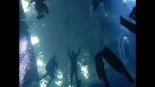 freediving 12.6. 2013 Liberec
